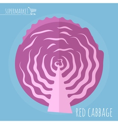 Red cabbage icon vector image vector image