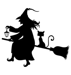 Witch fly cat vector