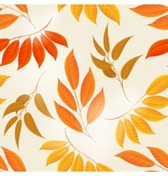 Elegant autumn leaves yellow background vector