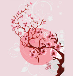 cherry blossom background beautiful spring nature vector image