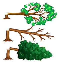 chopped trees on the floor vector image vector image