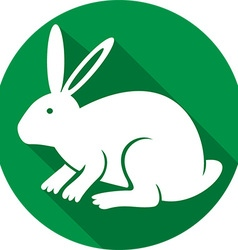 Rabbit Icon vector image vector image