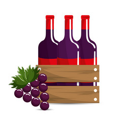 Bottles wine and grape icon vector