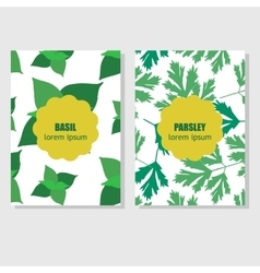 Concept for packing design with aromatic herbs and vector