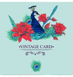 Floral Vintage Card with Peacock vector image