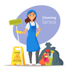 Household cleaning concept vector