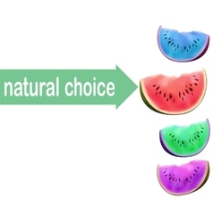 Watermelon slice no gmo choice consept modified vector