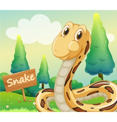 A snake beside a wooden signage vector
