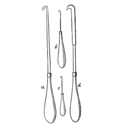 hooks used in the process of egg blowing for the vector image vector image