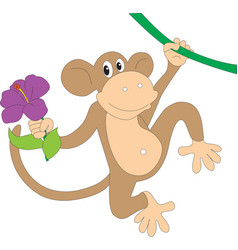 monkey with a bouquet of flowers vector image