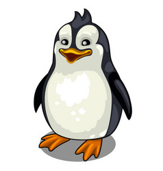 one smiling penguin on white background vector image vector image