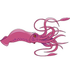 Squid cartoon vector