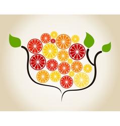 Branch an orange vector image