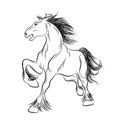 vector image a horse tattoo vector image