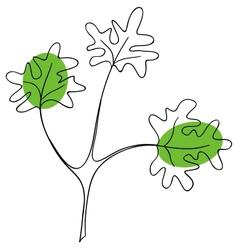 Parsley vector image