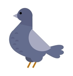 Dove icon cartoon style bird vector