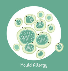 mould allergy for medical vector image vector image