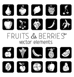 Set of square icons with fruits and berries vector image vector image