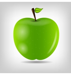 Sweet tasty apple vector