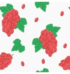 Seamless pattern with red grapes on white vector