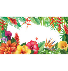 Banner from tropical flowers vector