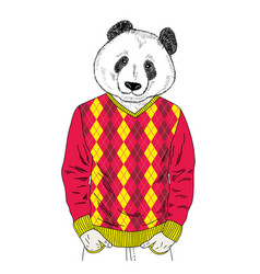 panda boy in colorful clothes vector image vector image