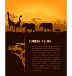 African design template vector image