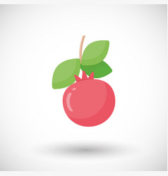 Pomegranate fruit flat icon vector