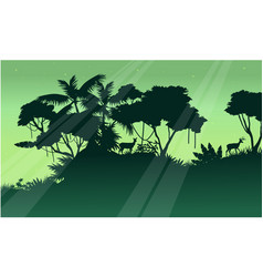 Silhouette of tree on the jungle scenery vector
