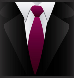 Suit with elegant tie icon vector