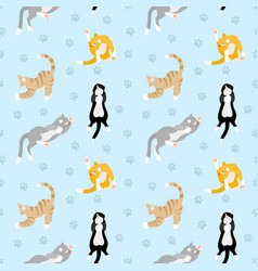 Beautiful pattern with different breeds of cats vector