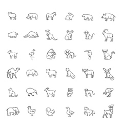 Icons zoo animals vector