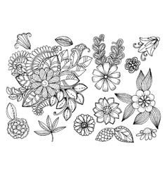 Set of doodle floral elements for design or vector image