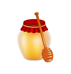 Sweet honey in jar and wooden honey dipper vector