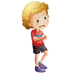 An angry little boy vector image