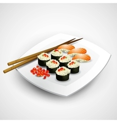 Sushi plate vector