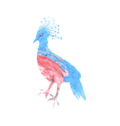 crowned pigeon silhouette with a blue and pink vector image