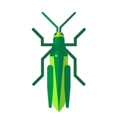 Cute grasshopper cartoon agricultural zoo large vector