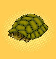 Turtle hiding in shell pop art vector