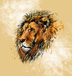 Colored hand sketch lion head vector