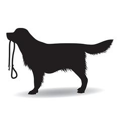 dog walking vector image