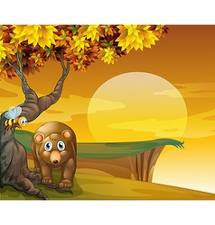 A sad bear and a bee near the cliff vector image vector image