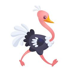 cartoon cute ostrich vector image