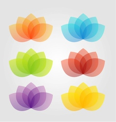 Graceful lotus with 5 petals vector