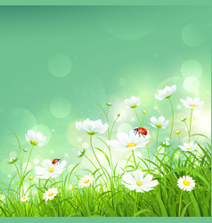 Natural background with flowers vector image vector image