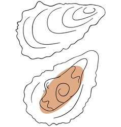 Oyster vector image vector image