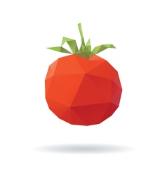 Tomato abstract isolated on a white vector