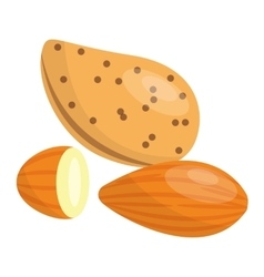 Pile of nuts almonds vector