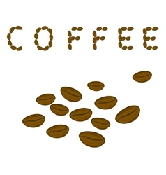 Coffee beans and the word Coffee vector image vector image