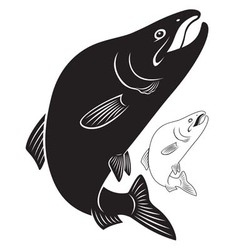 Fish humpback vector